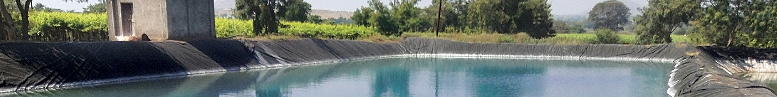 pondliner-featured